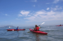 Sea Kayaking5