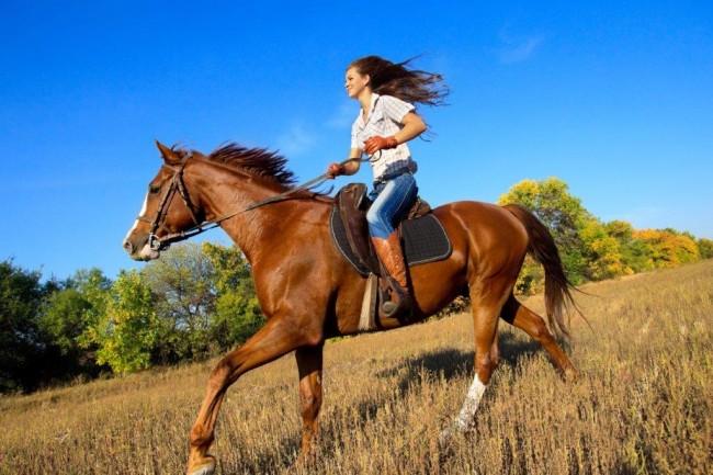 Adventure Zone Cullinan - Horse Riding